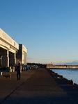 平潟港をお散歩
