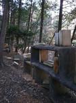 森の中の本棚