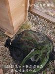 金陵辺とみつばちの巣箱