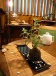 りんどうの苔玉