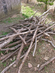 焚きつけ用の薪