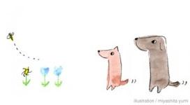 Brown Dog Company(ブラウンドッグカンパニー)